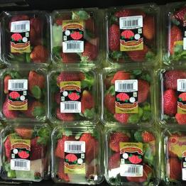 17-5-8 strawberrys