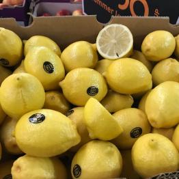 15-2-19 lemons