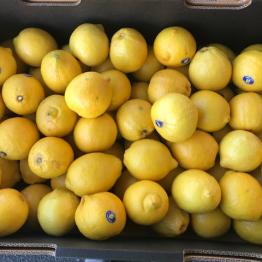 17-5-18 lemons wa