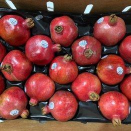 1-9-20-pomegranates